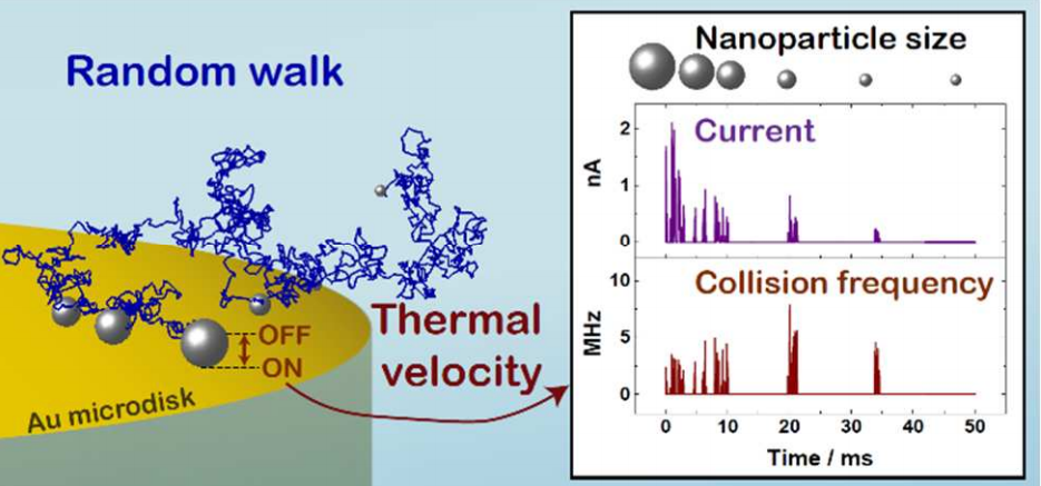 Collision Dynamics During the Electrooxidation of Individual Silver Nanoparticles